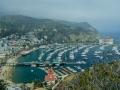 Catalina - vista città e porto 9