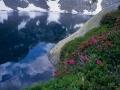 4.Lago-Sassolo-superficie-+-rododendri