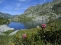 7.Lago Sassolo visto da riva 99