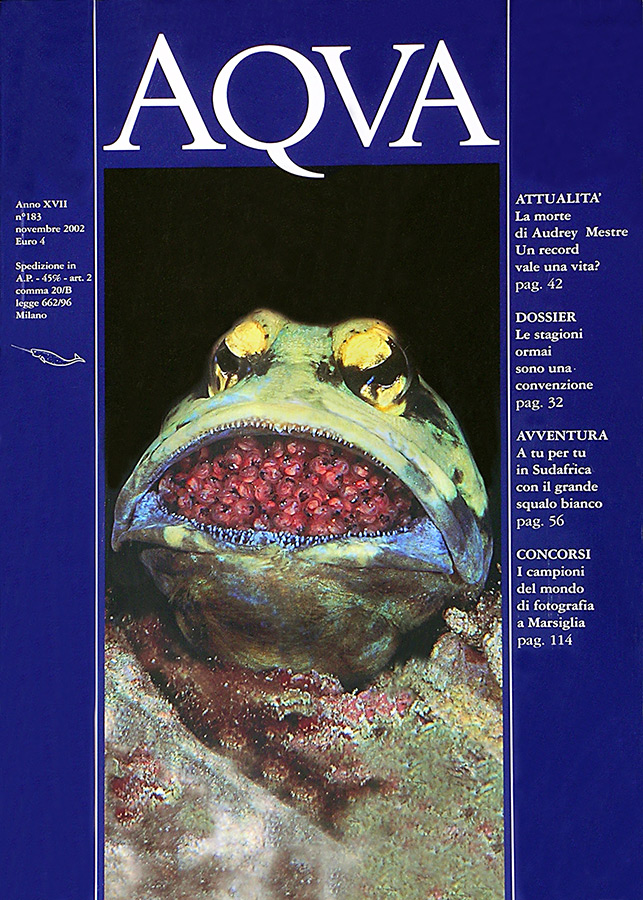 Aqva-2002---72-dpi