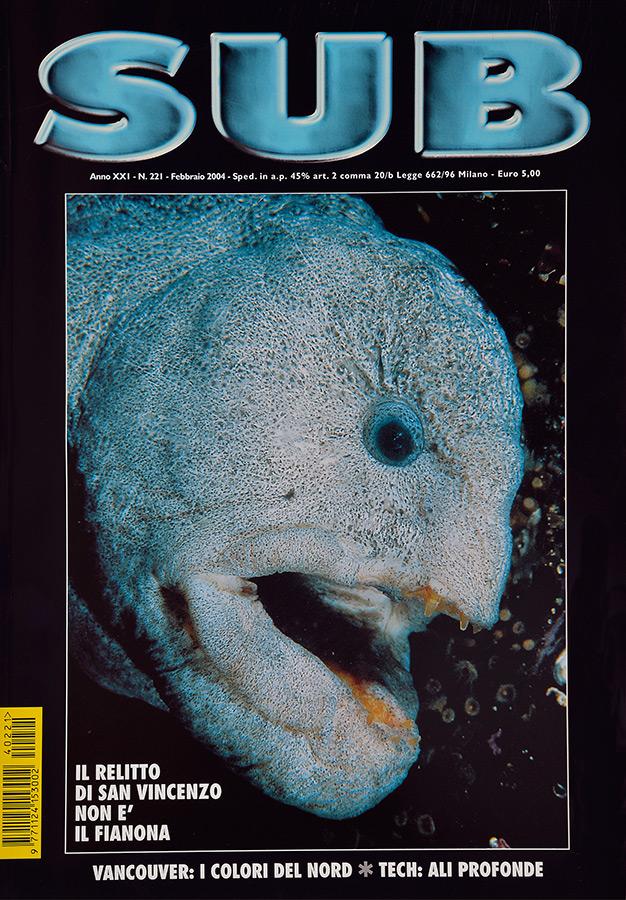 Sub--2.2004---72-dpi