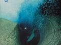 Nereus-4-99---72-dpi