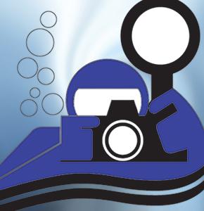 logo_biennale_blu